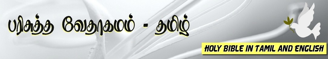 Tamil Bible பரிசுத்த வேதாகமம் (Holy Bible